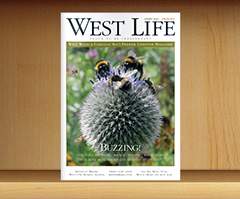 west-life-spring-2013